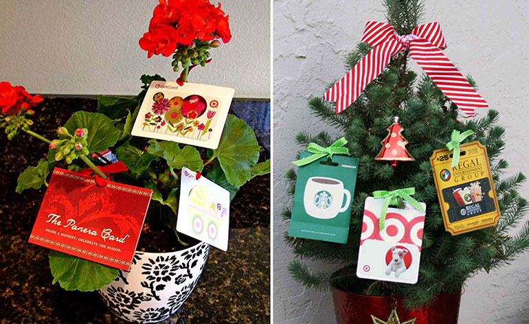 gift cards tied to a plant
